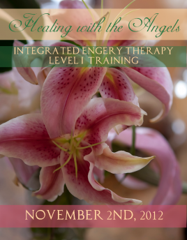 Level I Integrated Energy Therapy Training